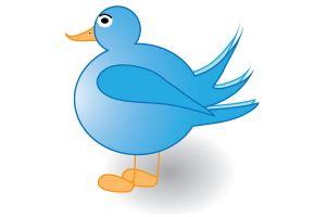 1030887_tweet_tweet___