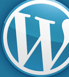 wordpress-does-not-help-seo